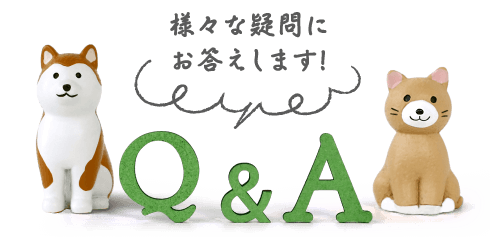 鹿児島市 動物病院 yuka犬と猫のクリニック Q&A さまざまな疑問にお答えします!