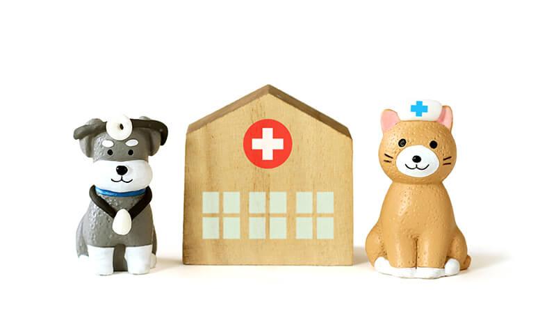 ペット保険画像